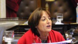 """Alicia Ciciliani: """"Ahora no pueden hablar más de fraude ni de irregularidades"""""""