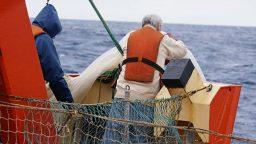 """Enrique Marschoff: """"La sobrepesca se da porque los pescadores están metidos en un sistema económico"""""""